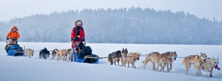 David Graham dogs pulling sleds and mushers on a frozen Bear Lake in the BWCA