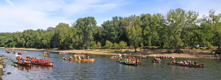 fifteen plus canoes, steered by groups in brightly colored clothing paddle down the Mississippi river, during the day, spanning from one bank to the other