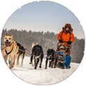 Trips by activity: Dogsledding the Boundary Waters Canoe Area