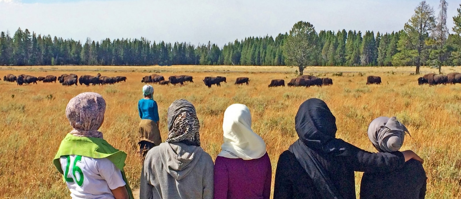Young women view buffalo in Yellowstone