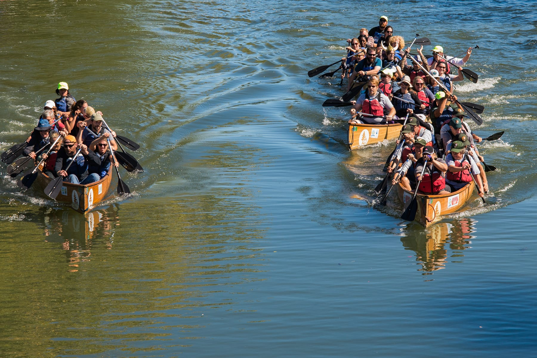 Paddlers race in the first annual Creekness Stakes